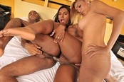 Crazy and Wild Tranny Orgy with Thayla and Tayana