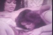 Vanessa Del Rio Classic Lesbo Porn
