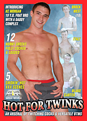 Hot For Twinks