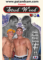 Stud Wood