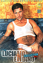 The Luciano Endino Collection V
