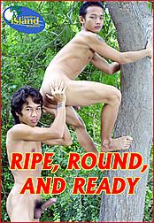 Ripe Round & Ready