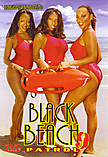 Black Beach Patrol 09