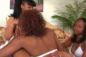 Three Lesbian Skanks Lick Some Wet Pussy